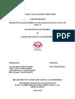 minor_final.pdf