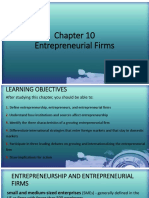 Chapter 10 Entrepreneurial Firms