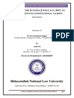 Criminal Justice System Project