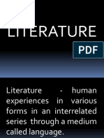 Basic Concepts on Literature and Basis of Knowledge in Evaluating Literature