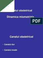 Dinamica miometriala.ppt