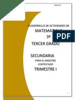 3o Maestro- Cuadernillo de Actividades de Matematicas (2)2