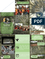Modern Brochure Template.pdf