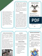 triptico editable (3)