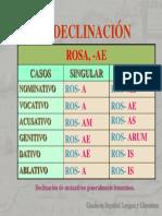 1ª Declinación