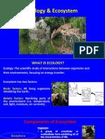 4-Ecology