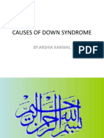 Causes of Down Syndrome