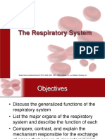 Respiratory system.ppt