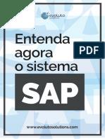 Entenda Agora o Sistema SAP
