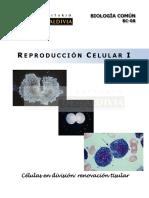 7 Reproduccion Celular i