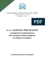 Resumo Livro - Marcha Triunfante