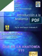 Clase Introduccion a La Anatomia