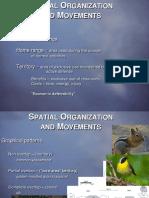 T04 Spatial Organization