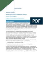 de pruebas sustantivas.pdf