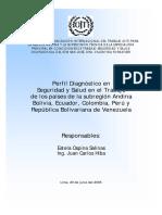 Perfil Diagnóstico en Seguridad y Salud en el Trabajo de los países de la subregión Andina Bolivia, Ecuador, Colombia, Perú y República Bolivariana de Venezuela