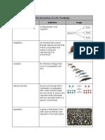 leonardo garcia - the evolution of life   vocabulary