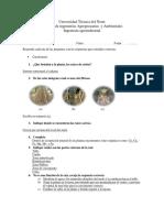 352126223-Cuestionario-Bio-Raiz.docx