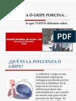 Gripeporcina 30.04.09