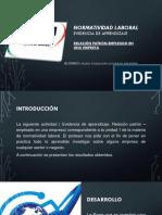 Evidencia.pptx