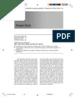 FLICK_2009_Grupos_Focais.pdf