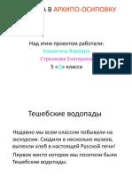 Кашигина, Стрелкова проект