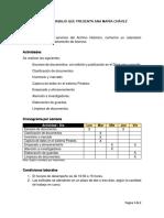 AM Chavez_Plan de Trabajo_2019