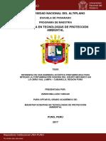 Zenon_Mellado_Vargas.pdf