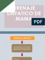 Drenaje Linfatico Expo