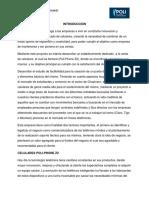 EMPRESA DE CELULARES
