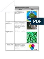 noel flores - resources in ecosystems   vocabulary
