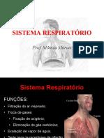 Aula9SRespiratorio20181 (1)