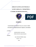 Arguedas Deza Frank Yudel.pdf