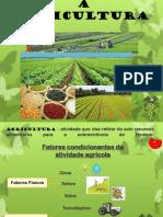 Agricultura I - Conceitos  c. guião  19-20.pdf