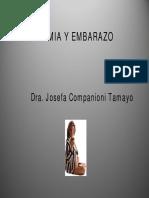 anemia_y_embarazo.pdf