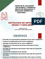 24. Histologia Arterias Venas y Capilares