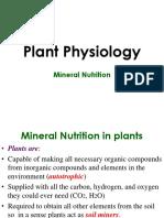 mineral-nutrition-mycorrhiza.ppt