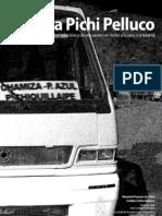 Caleta Pichi Pelluco Memoria Proyecto