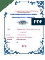 105755535-Informe-2-de-Farmaco-Quimica-Autoguardado.docx