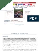 5 SEMESTRE GUARANI  INFORMACION PROYECTO PILOTO BIOGAS.docx