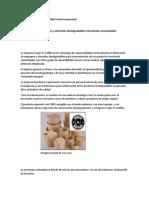 Estrategia de responsabilidad social empresarial.docx