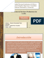 mastitis-091113153243-phpapp02 (2)
