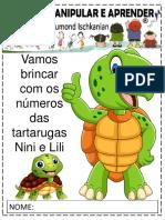 Números Tartarugas