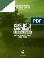 Conflictos Ambientales en Ecosistemas