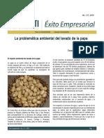 procesam d pp.doc