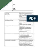 articulo imagenes pequeños.pdf