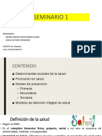 Seminario 1 -Fmh Usmp- Salud Publica II -Finalfinal