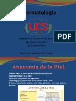 Anatomìa y Lesiones Cùtaneas Tema 1.