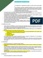 BULLARD – RECTIFICACIÓN.docx