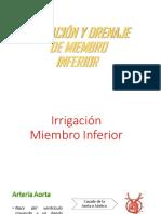 Clase Irrigacion m Inf
