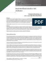 Dialnet-VentajasAnatomofuncionalesDelEjercicioCotidiano-5420563